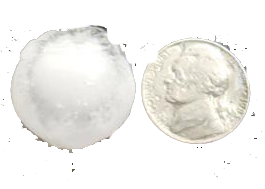 Nickel Sized Hail Damage Dent Repair Removal