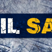Hail Sale Information About